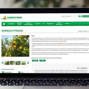 criação de site - doenças e pragas - Fundecitrus