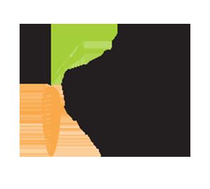 Regina Picadinhos